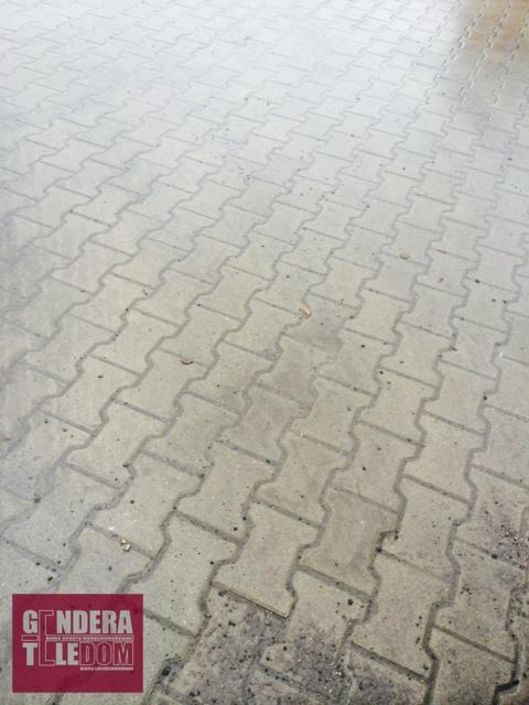 działka 23000m2 - Poznań