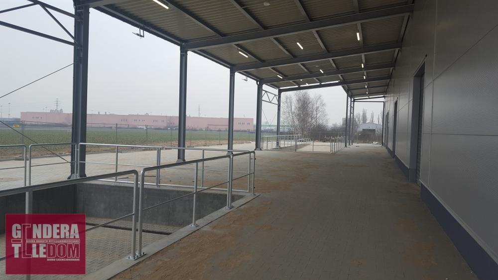 lokal użytkowy - Poznań